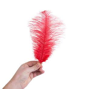 Plym, liten 25-28cm röd