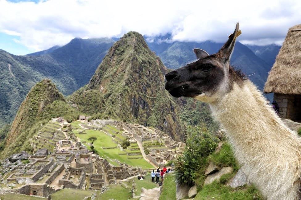 Machu Picchu, Idziemy Dalej w 2016
