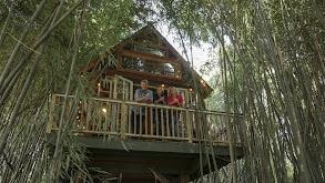 Ultimate Treehouses VI thumbnail