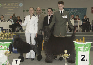 Photo: INT Show Trencin/SK 2nd place with ICh. Al Pacino Gandamak Sunday, January 30, 2005