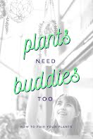 Plants Need Buddies - Pinterest Pin item