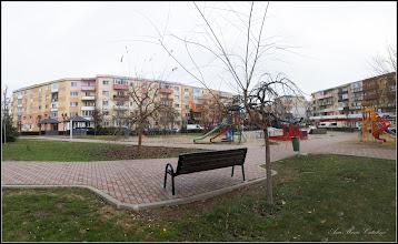 Photo: Turda, Parcul Teilor - 2018.12.05