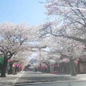 5シリーズ セダン  F10のカスタム事例画像 nikichi--88さんの2020年04月05日23:50の投稿