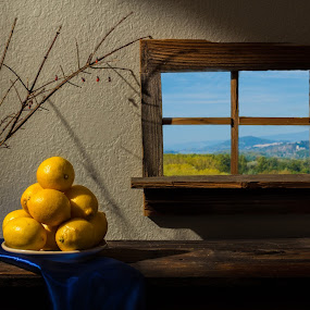 Still Life Number 11 by Richard Saxon - Artistic Objects Still Life ( blue and green, lemons, blue, green, still life, yellow, landscape, shadows )