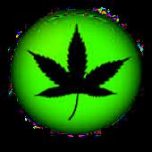 Cannabis Crush