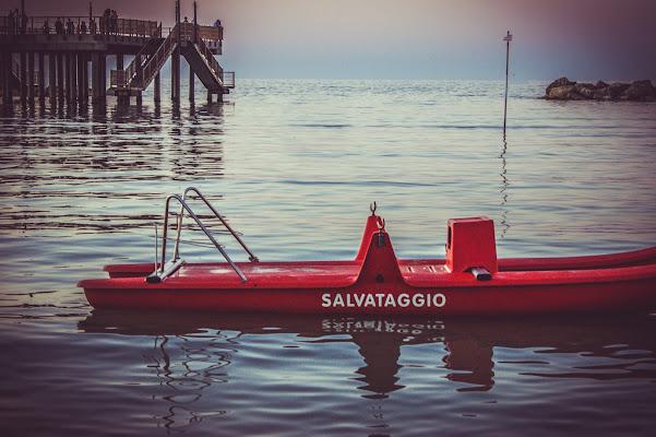 Salvataggio. di Alessi Natascia