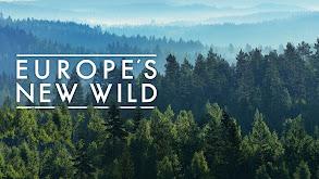 Europe's New Wild thumbnail