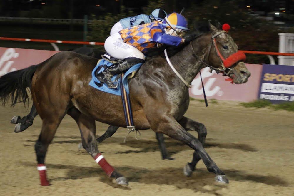 Lord Fever (Bonus Fever) gana Handicap (1100m-Arena-VSC).