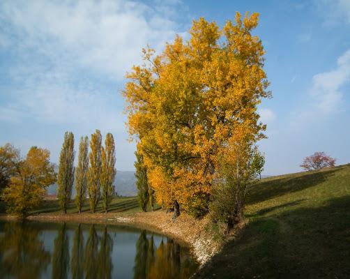 Pomeriggio d'autunno di Giò Volpi
