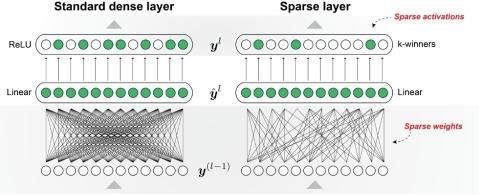 Numenta's sparse network makes two modifications to a standard deep learning layer, utilizing both sparse weights and sparse activations. The end result is a sparse network that more closely mimics the brain. (Graphic: Business Wire)