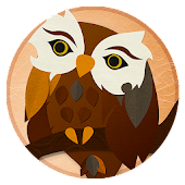 Hoot the Owl and Ladybug