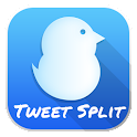 TweetSplit App icon