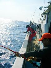 Photo: 泳がせ用の魚も確保! いざ! とたんに・・・トリプルヒット! 体をもっていかれそうなぐらい!!