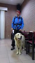 Photo: waf  waf  ben dr klaar voor,  als hij nu maar eens wilde vertrekken....
