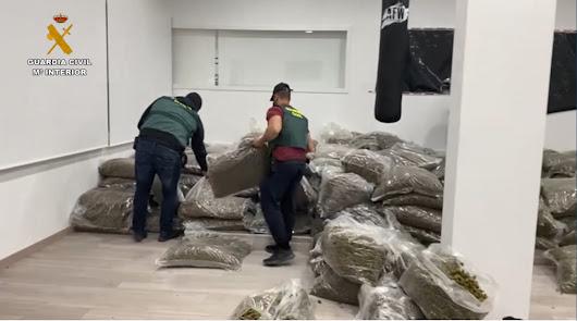 Un 'gurú' del cáñamo, cazado en el mayor golpe contra la marihuana en España
