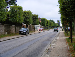 Photo: But a little further on, the town begins to appear, with trees pruned in the typical French style.
