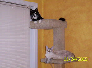Photo: Eddie & Boo (2005)