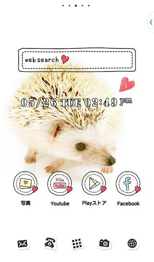 可爱的换肤壁纸★Cute Hedgehog