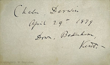 Photo: Charles Darwin's autograph. Copyright of scan: G. Beccaloni