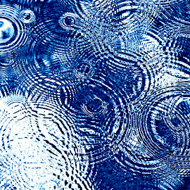 Rhapsody in Blue by Reuss Griffiths - Abstract Patterns ( blue, white, raindrops, merging patterns, circles )