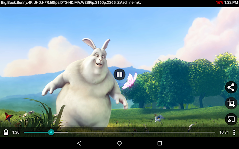 BitX Torrent Video Player screenshot 7
