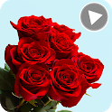 Animated Flowers Stickers for Whatsapp GIF 🌹 💐 icon