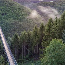 Drone shot Geierlay bridge Germany by Henk Smit - City,  Street & Park  Vistas