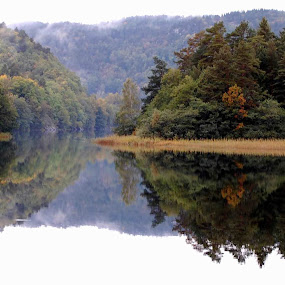 Reflextion by Jan Myhrehagen - Landscapes Forests (  )