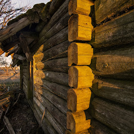 by Pixie Simona - Buildings & Architecture Decaying & Abandoned ( log cabin, golden hour, decay, abandoned, house )