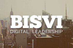 BISVI | Virtual CTO & Web Advisory Services