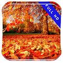 Early Autumn Walk Live Wallpap icon