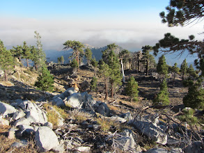 Photo: View south from Middle Hawkins