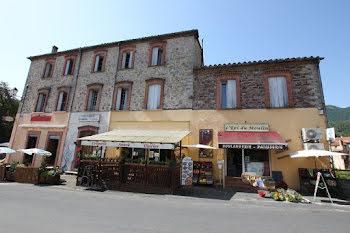 locaux professionels à Saint-Laurent-de-Cerdans (66)