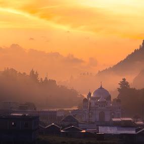 morning at Gayo Land by Khairi Went - Landscapes Sunsets & Sunrises ( desert, sunrise, pine, landscape, misty )