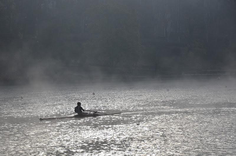Vogare nella nebbia di Emanuele Reasso