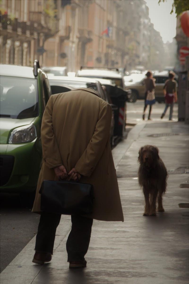 I cani, roba da perderci la testa... di smike25