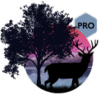 Amazing Land Pro icon