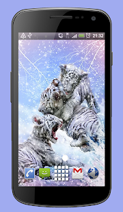 White Snow Tigers Live Wallpaper Theme - náhled