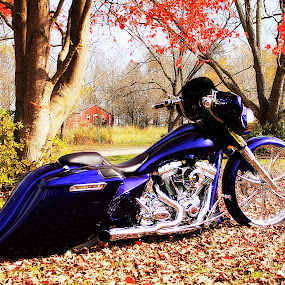 Blue Bagger by Kevin Hill - Transportation Motorcycles ( harley davidson, harley, barn, fall colors, bagger, motorcycle, golden eagle, leaves, country,  )