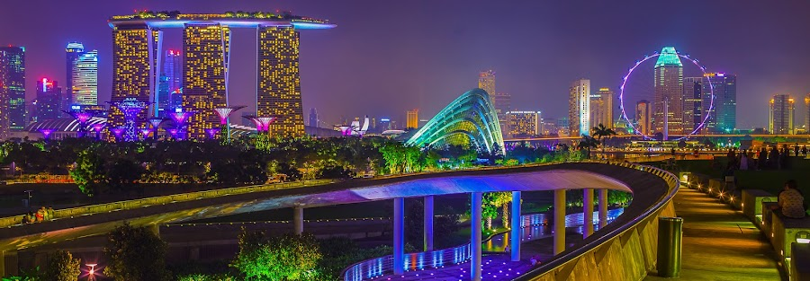 A Night in Singapore by David Cheok - City,  Street & Park  Skylines ( david cheok, cityscape, best of halal, singapore, brunei photographer,  )