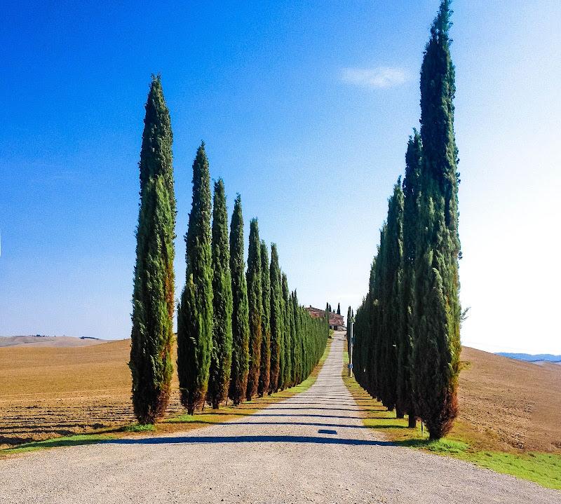 Tuscany di enzocala