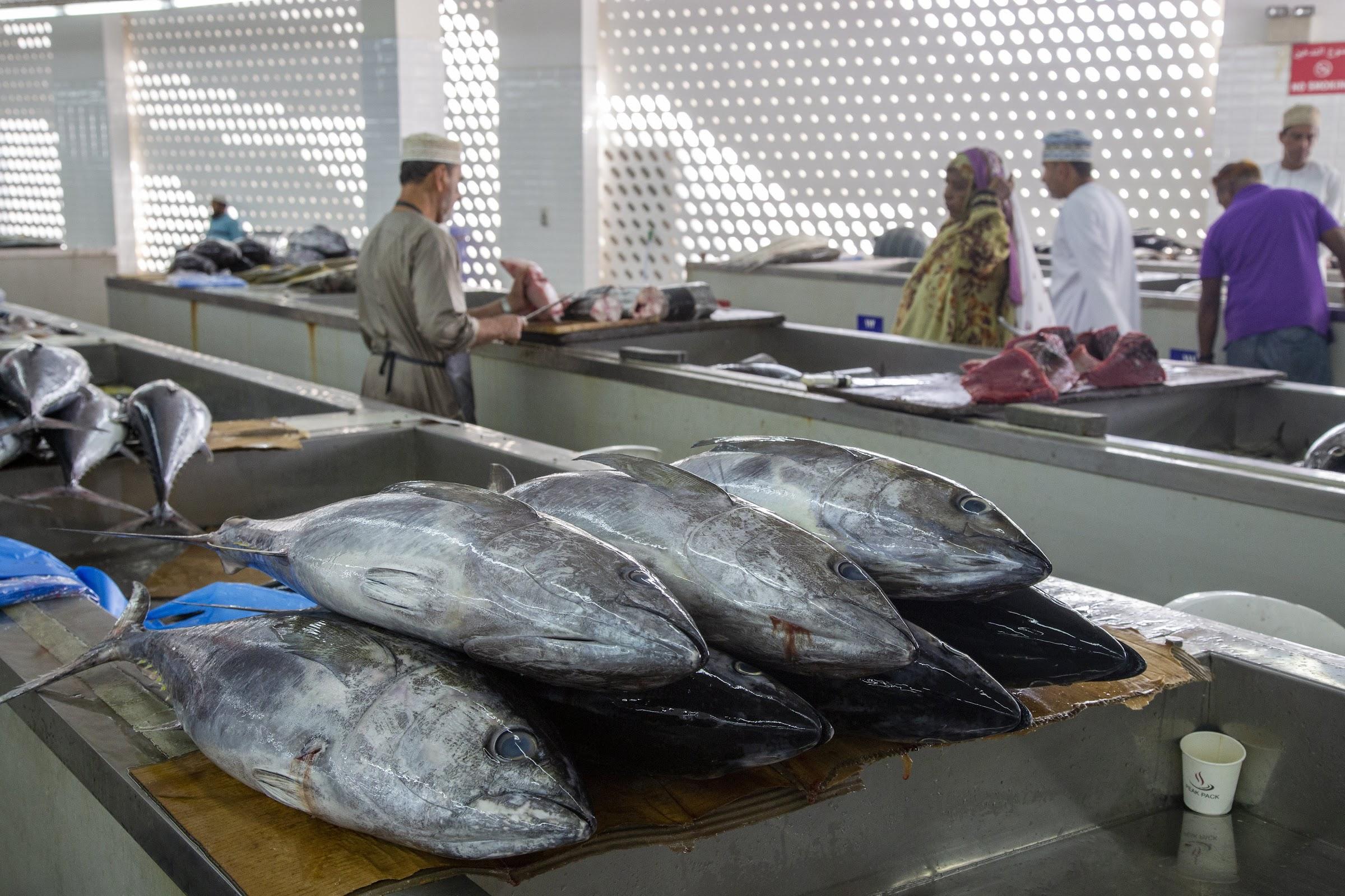 Matrah, targ rybny