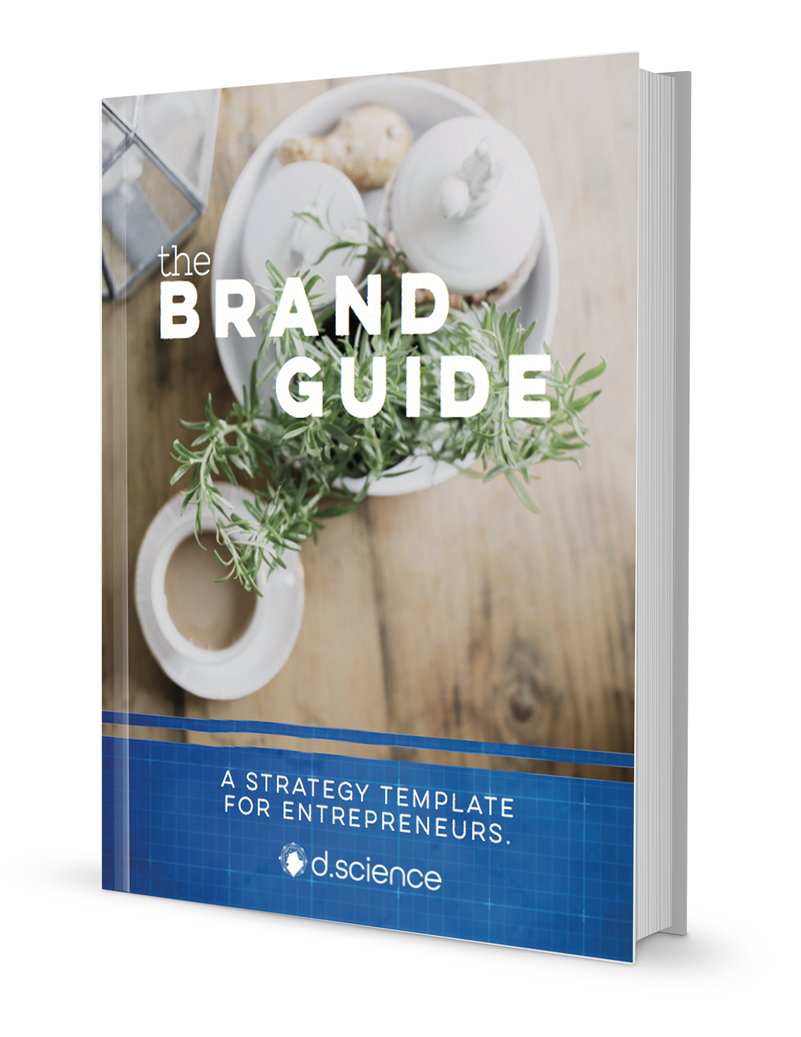 Brand strategy template