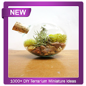 1000+ DIY Terrarium Miniature Ideas Android APK Download Free By Chronos Studio