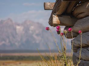Photo: Grand Teton National Park, Wyoming.  www.JeffSullivanPhotography.com