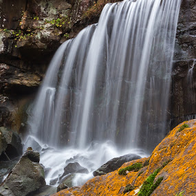 Orange Falls by Kevin Frick - Landscapes Waterscapes ( west virginia, waterfall, moss )