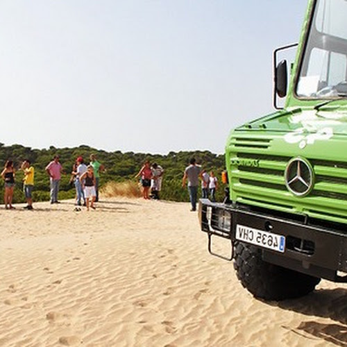 Besuchen Sie Doñana im SUV