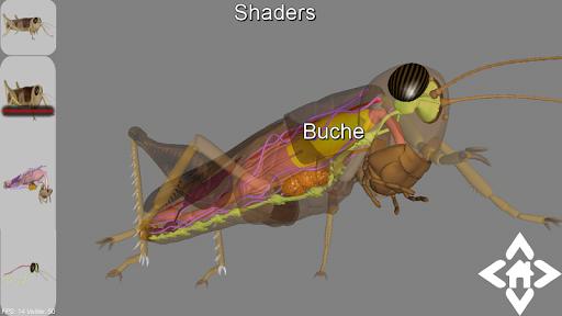 3D Grasshopper Explorer