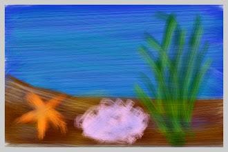 "Photo: ""Starfeesh and the Kelp"""