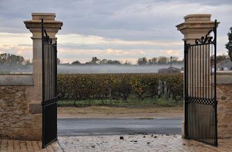 Photo: Bordeaux, Sauternes, Château Haut-Bergeron, 2011   © Eckhard Supp